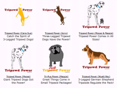 New Tripawd Power Designs