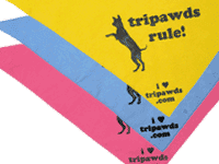 Tripawds Rule Dog Bandannas