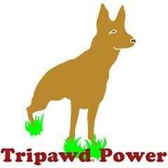 Three Legged German Shepherd Tripawd Power T-Shirt Design