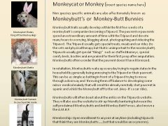 Monkeydogs Cross Species Classification