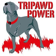 Tripawd Power Design Inspired by Three Legged Cane Corso Bellona