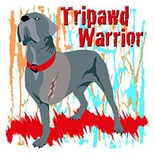 Tripawd Warrior Design Inspired by Three Legged Cane Corso Bellona