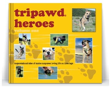 Preview Tripawd Heroes Pages on Blurb