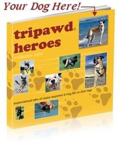 Personalize Tripawd Heroes with Your Story