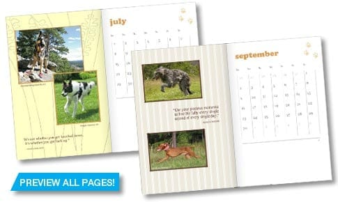 2012 Tripawds Weekly Planner Book