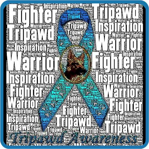 Tripawd Awareness Ribbon