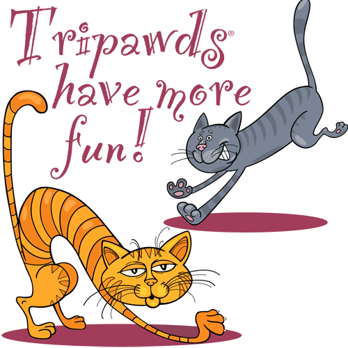Tripawds three Legged Cats Have Fun T-shirts Gifts