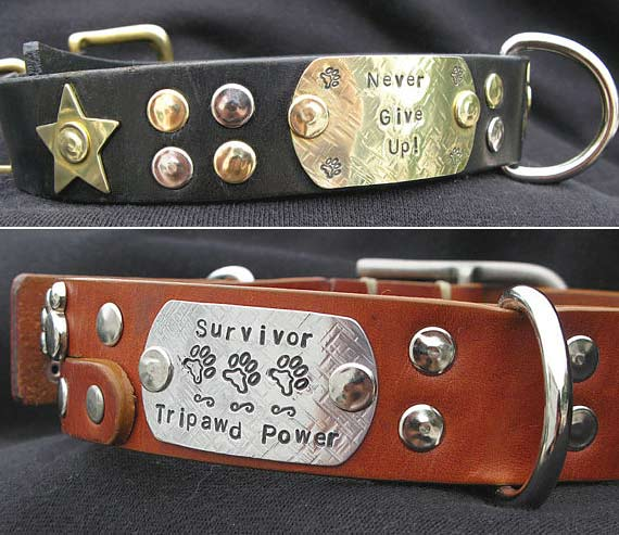 Recycled Belt Dog Collars from Tripawds Etsy Store