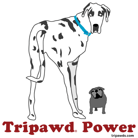 Moose and Maggie Tripawd Power Three Legged Dog Design