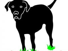 Rear Leg Black Lab Tripawds T-Shirt Design