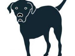 Three Legged Front Leg Back Lab Tripawd Dog T-Shirt Design
