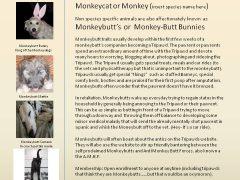 Monkeydogs Cross Species Classification
