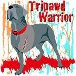 tripawd warrior