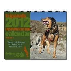 2012 Tripawds Inspirational Three Legged Dogs Calendar 2