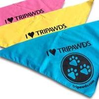tripawds bandana