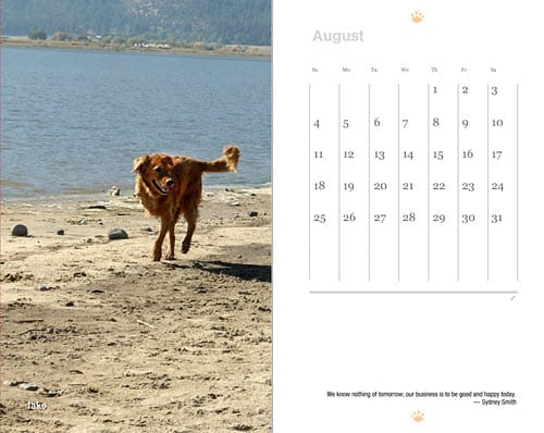 2013 Tripawds Now Weekly Planner