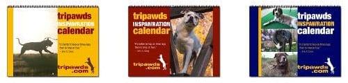 2014 Tripawds Calendars