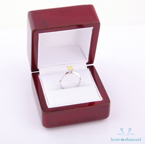 Heart in Diamond Pet Memorial Fine Jewelry