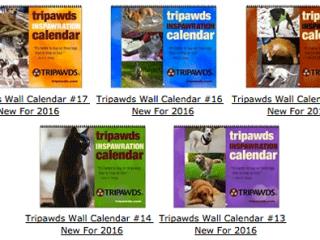 Tripawds 2016 Calendars
