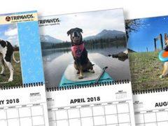 2018 Tripawds Calendar #24