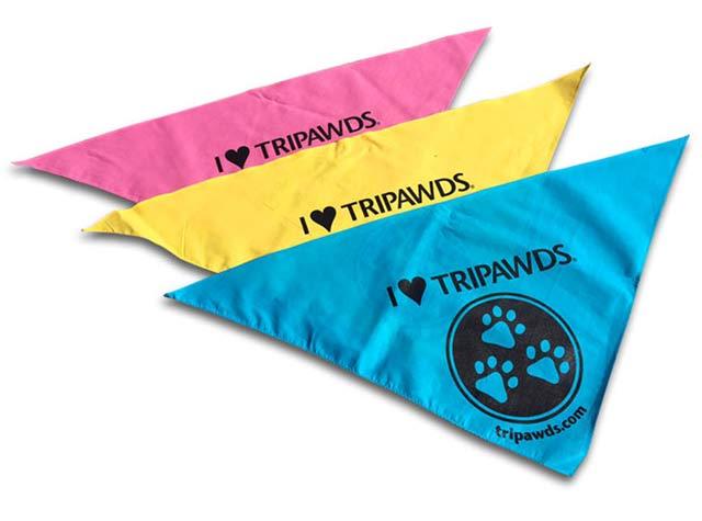 tripawds dog bandanas