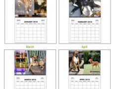 2019 Tripawds Calendar #27