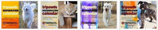 2019 tripawds calendars