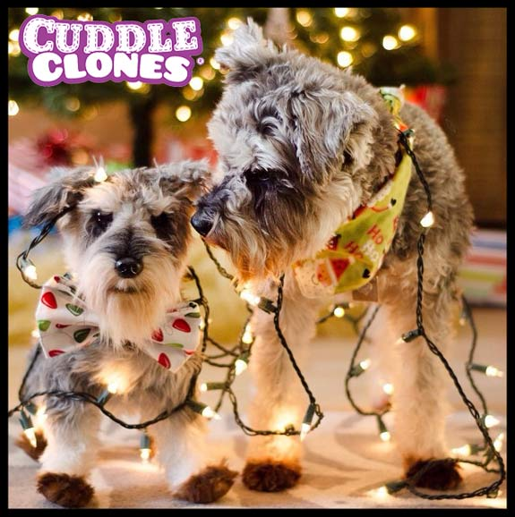 Cuddle Clones Christmas