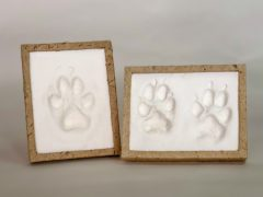 DIY paw print impression kit