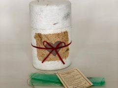 bio-degradable pet urn, oval