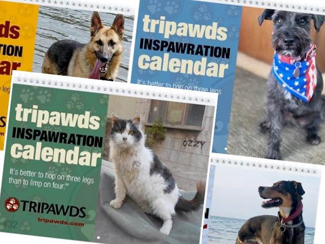 2020 Tripawds Calendars