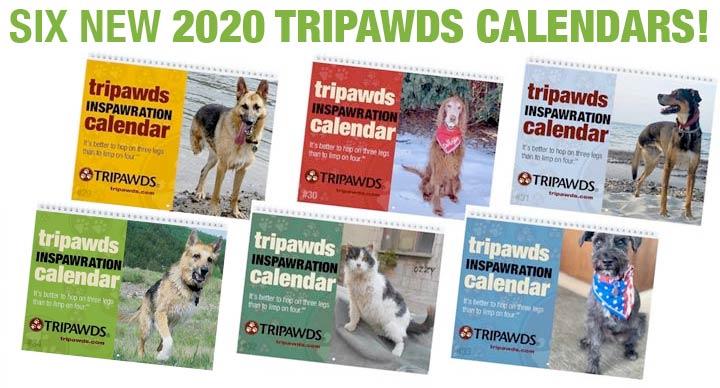 tripawds 2020 calendars