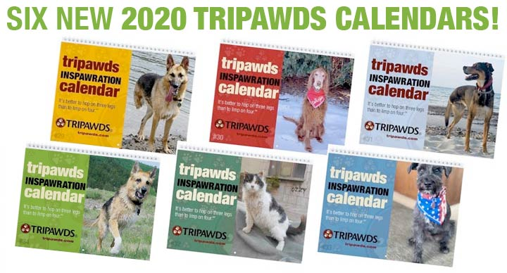 Three legged dog gift calendar