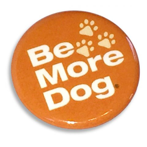 Be More Dog Button