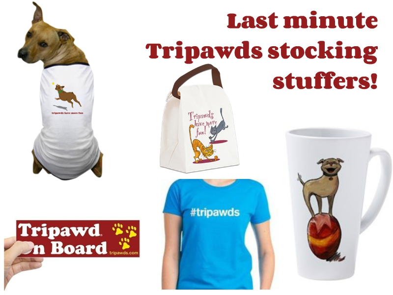 best Tripawds gifts