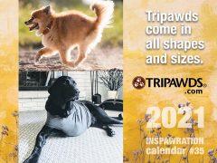 2021 Tripawds Calendar
