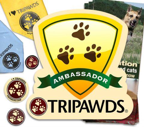 Tripawds Ambassador
