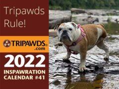 2022 tripawds calendar